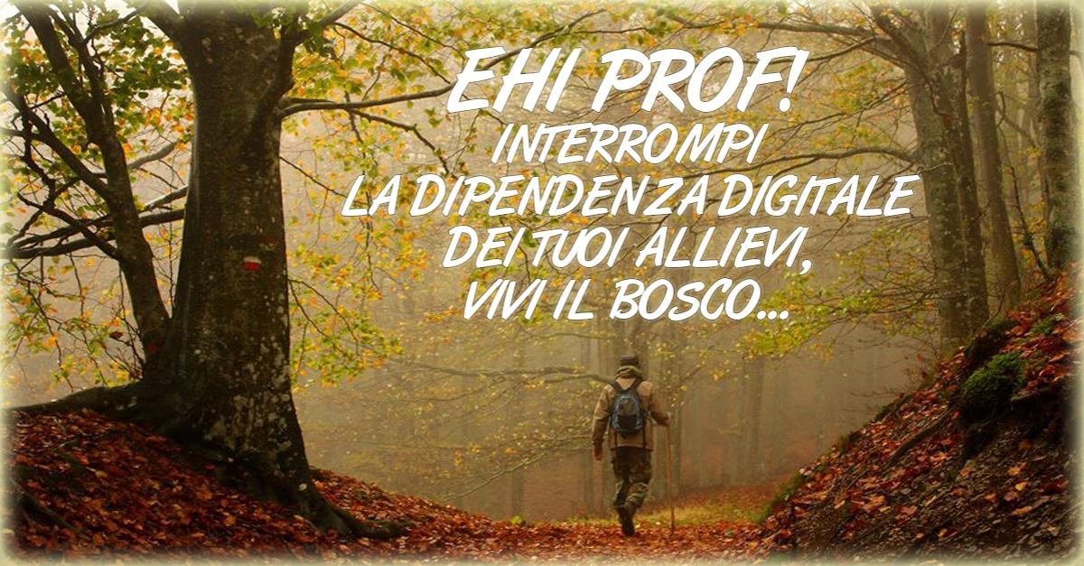 Vivi il Bosco